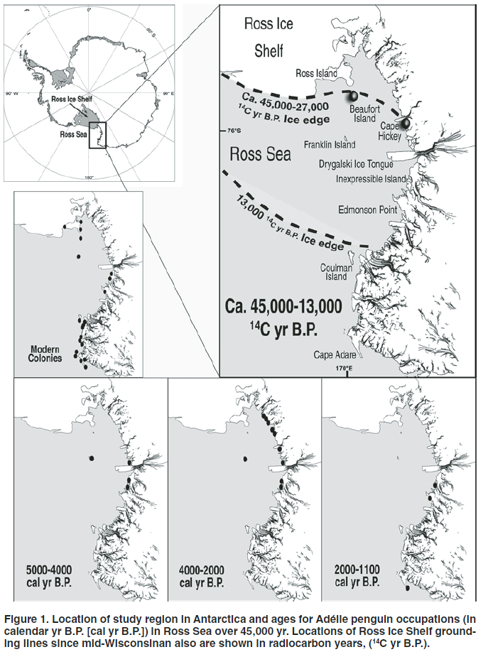 Ross Sea occupation map